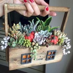 48 Awesome Repurposed Succulent Planters Ideas - Succulents are perfect plants for dry gardens and are easy to root and grow. Once you learn how easy it is to propagate succulent plants, it's a great. Succulents In Containers, Cacti And Succulents, Planting Succulents, Succulents Wallpaper, Succulents Drawing, Propagating Succulents, Succulent Display, Succulent Arrangements, Succulent Gardening