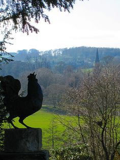 Photos from Chatsworth House