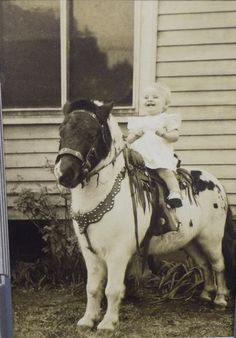 happy baby Antique Photos, Vintage Photographs, Vintage Photos, Cowgirl Images, Vintage Children Photos, Vintage Photo Booths, Pony Rides, Vintage Horse, All The Pretty Horses
