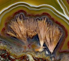 Condor Agate (Saganite) | #Geology #GeologyPage #Agate #Mineral    Locality: Argentina    Photo Copyright © Uwe Reier/flickr    Geology Page  www.geologypage.com