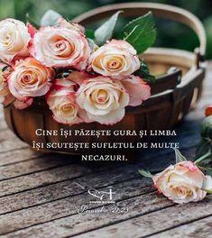 Jesus Loves You, God Jesus, Spirituality, Love You, Alba, Flowers, Advice, Instagram, Inspirational Quotes