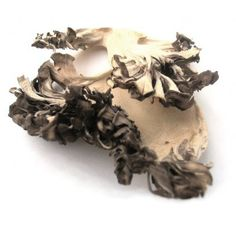 Dried Maitake Mushrooms (Hen of the Woods)- 16 oz. (1 lb.) Life Gourmet Shop Read more  at the image link.