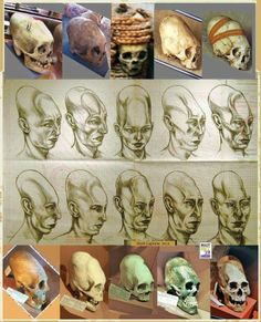 Elongated skulls found in Bolivia, sketched as they would have looked in real life Not aliens. Ancient Aliens, Aliens Und Ufos, Ancient History, Ancient Mysteries, Ancient Artifacts, Creepy, Cryptozoology, Interesting History, Ancient Civilizations