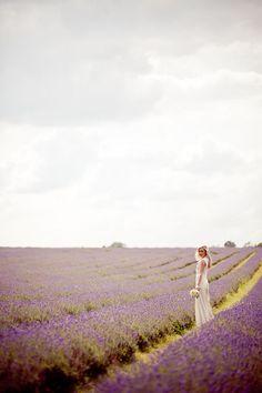 Miss Lily : Flores de boda: la lavanda