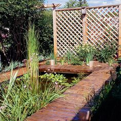 This trellis screen creates a separation between a water garden area and the rest of the yard, letting breezes pass through.