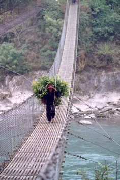 Nepal - Pokhara, Trisuli river, suspension bridge