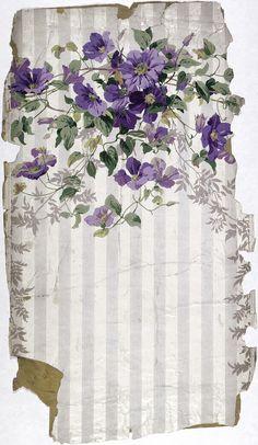 papier violette