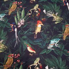 0f963e5b00c81 Stoff Meterware Baumwolle Frosch Vögel bunt dunkelblau Dekostoff  Digitaldruck