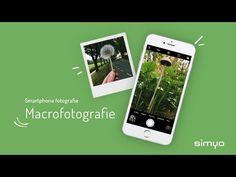 Tips voor macrofotografie met een smartphone | FotoVideo.nu