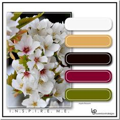 Blog post: INSPIRE ME: With Colour Apple Blossom - Digital Scrapbook Place