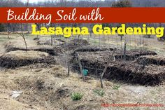 Building Soil with Lasagna Gardening. To create a healthy, resilient garden with few pests and disease, building soil is the key to growing nutrient dense food in your garden. Essentially, a lasagna garden is made up of layers and layers of organic material that compost in place to create rich garden beds.#gardenbeds #lasagnagardening