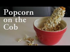 Popcorn on the cob! Corn on the cob that turns to popcorn on the cob in only a few easy steps! A must try with your family. Bento Recipes, New Recipes, Cooking Recipes, Favorite Recipes, Easy Recipes, Cooking Popcorn, Microwave Popcorn, Faire Du Pop Corn, How To Make Popcorn