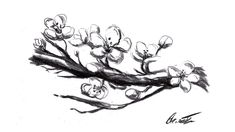 How to draw cherry flower Cherry Flower, Cherry Tree, Pencil Drawings Of Flowers, Charcoal Drawing, Anime, Home, Cherry Plant, Flower Pencil Drawings, Cherry Blossom Tree