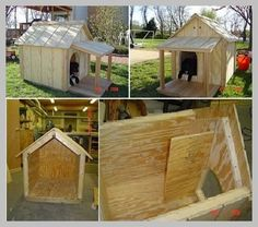 Dog House Training Tips That Work | Dog House *** More details can be found by clicking on the image.