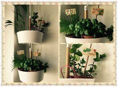 Suspension de plantes aromatiques dans la cuisine.