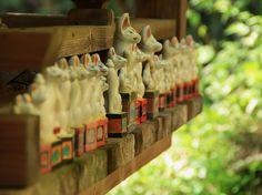 Inari Foxes by Damon Bay, via Flickr Japanese Landscape, Japanese Architecture, Folk Religion, Japanese Fox, Mystical World, Fox Spirit, Go To Japan, Natsume Yuujinchou, Witch Aesthetic
