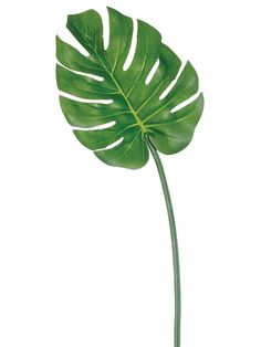 """30"""" Silk Philodendron Leaves $4.2"""