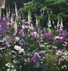 backyard designs – Gardening Ideas, Tips & Techniques Flower Garden Design, Backyard Garden Design, Backyard Landscaping, English Garden Design, Luxury Garden Furniture, Home And Garden Store, Magic Garden, Diy Planters, Plantation
