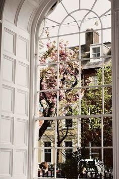 Love the huge window