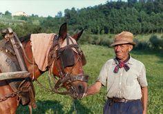 L'uomo e il cavallo #people #provinciadicuneo #piemonte #italy