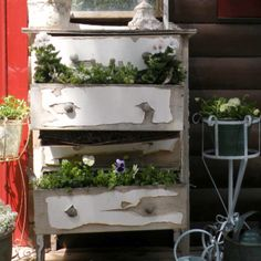 Old dresser planter box. I'm making one if these this year!