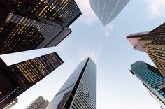 The Largest Banks Comprise the Foundation of FinTech Growth and Development Love Again, Bitcoin Price, Skyscraper, Toronto, Pitbulls, Foundation, Canada, Architecture, Banks