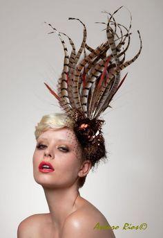 Long Pheasant Tales Headpiece