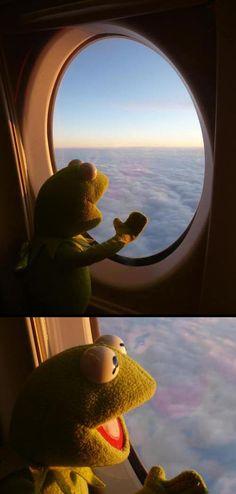 Kermit has never been so happy…