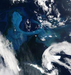 "NASA Terra Satellite Moderate Resolution Imaging Spectroradiometer - 16 January 2004 ""South Georgia Island"""