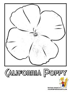 California Poppy Flower Printables At Yescoloring Free Coloring