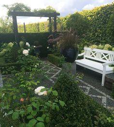 🍂🍁Fall colors 🍁🍂 #mygarden #garden #instagardenlovers #haven #minhave #tuin #garten #hage #trädgård #jardin #photooftheday #gardenlove