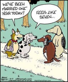 Dogs we've been married one 1 year today feels like seven 7 couple wedding anniversary humor