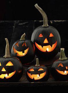 black jack-o-lanterns
