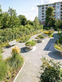 Demenzgarten Haus Lörick, Düsseldorf  Foto: Peter Hinschläger Garden Route, Seoul, Kew Gardens, Better Homes And Gardens, Sidewalk, Landscape, Design, Photos, Nursing Care