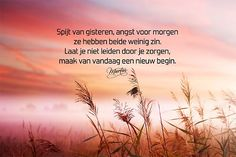 Is het voor jou lijden of leiden? Qoutes, Life Quotes, Dutch Words, Yoga Quotes, Inspire Others, Good To Know, Slogan, Letting Go, Positive Quotes