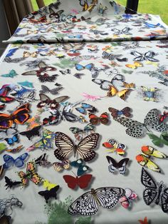 Christian Lacroix Butterfly Parade printed fabric for the new dining chairs.