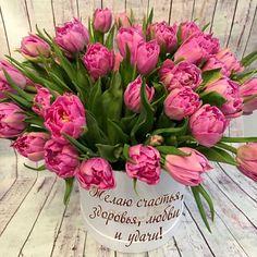 Женщина не может без весны, ta   OK.RU Birthday Greeting Cards, Birthday Greetings, Happy Birthday, Butterfly Art, Baby Knitting Patterns, Ikebana, Tulips, Floral Wreath, Birthdays