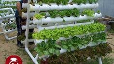 Jardin vertical tubos de pvc