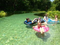 Kelly Park, Florida ~ cold spring tubing! Kelly Park, Florida Travel, Camping, Cold, Spring, Outdoor Decor, Fun, Ideas, Campsite