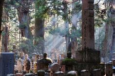 9th century Japanese cemetery.  Two of the lanterns have been kept continuously lit for 1,000 years.