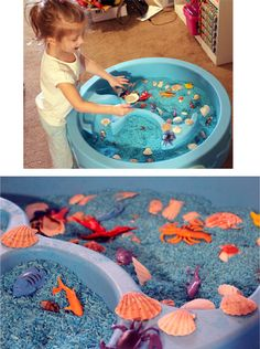 Ocean themed sensory table blue (food coloring and rubbing alcohol method) and bought seashells and inexpensive little sea creature toys. Sensory Boxes, Sensory Table, Classroom Fun, Classroom Activities, Ocean Activities, Activities For Kids, Preschool Lessons, Preschool Education, Early Education