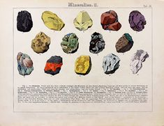 O BEL INVENTAIRE―アンヴァンテール*ARCHIEVE*SOLDOUT Blog Categories, Natural History, Minerals, Rocks, Painting, Cabinet, Stone, Collection, Jelly Cupboard