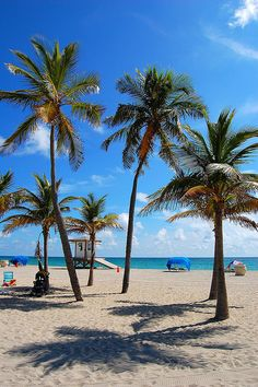 Hollywood Beach Florida,  my home for 20 years. I do miss it a little. Now that its winter in Tn. I miss it allot. sw