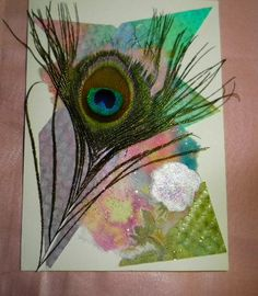 Peacock Feather on Assorted Papers