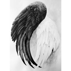 On Wings Art Print ❤ liked on Polyvore featuring home, home decor and wall art