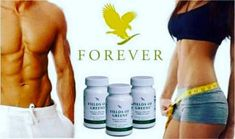 Forever Living has the highest quality aloe vera products and is recognized as the world's leading multi-level marketing opportunity (FBO) for forty years! Forever Green, Forever Aloe, My Forever, Jojoba Shampoo, Forever Living Business, Barley Grass, Cleanse Program, Nutritional Cleansing, Lose Weight