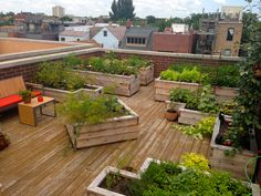 City Rooftop Vegetable Garden designed by BOTANICAL CONCEPTS CHICAGO. Garden Ideas for the summer!