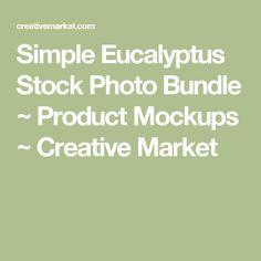 Simple Eucalyptus Stock Photo Bundle ~ Product Mockups ~ Creative Market