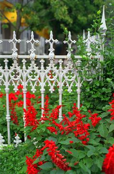 I love this iron fence