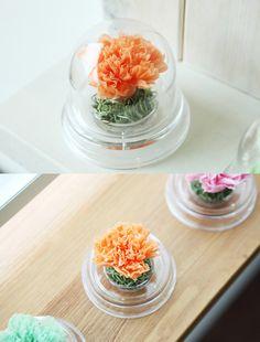 [바보사랑] 감사한 마음을 오래오래 시들지않게 /플라워/꽃/아크릴돔/선물/카네이션/어버이날/스승의날/Flowers/acrylic dome/Gift/Carnation/Mother's Day/Teacher's Day